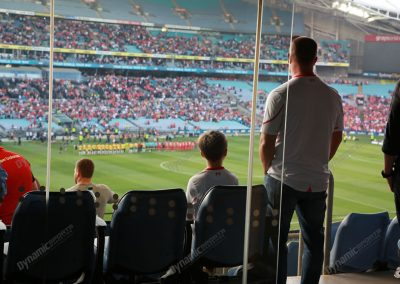 ANZ Stadium - Corporate Suite - View to Field